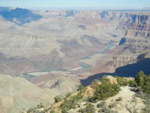 Grand Canyon 958