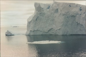 Have a look at seals on the ice flow in front of this iceberg. Is that a big berg?